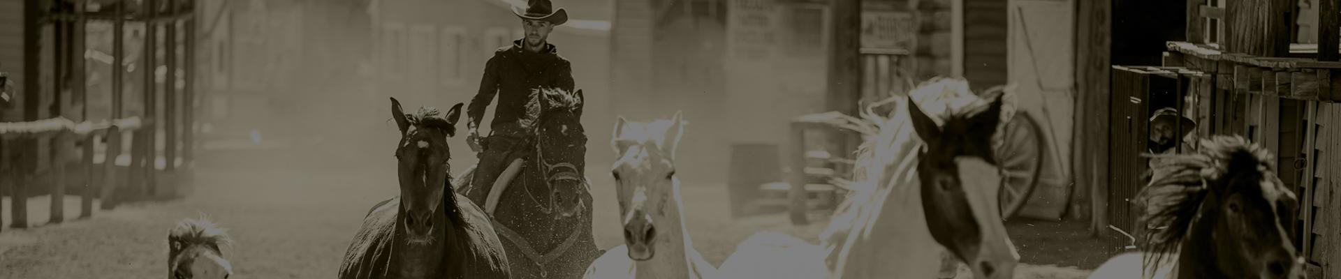Estampida de caballos en Sioux City Park Gran Canaria